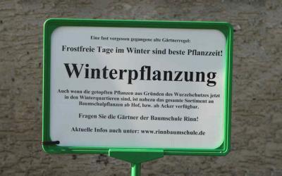 Kann man im Winter pflanzen?