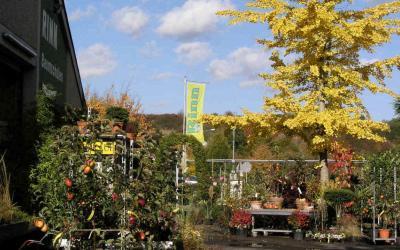 Aktionstage im Herbst – verkaufsoffene Sonntage